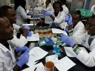 A_group_of_African_students_working_in_the_lab-960x675